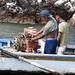 Coppia di giovani pescatori passano per le Islas Ballestas