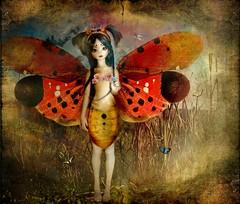 a midsummer night's dream (l u d y c o) Tags: flowers butterfly lily moth shakespeare fairy moonlight bjd fiori superdollfie farfalla fata msd balljointeddoll sylph falena mote amidsummernightsdream chiarodiluna soulkid souldoll silfide sognodiunanottedimezzaestate
