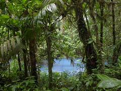 costa rica / volcano tenorio (Jrn Schiemann) Tags: nature rain rio forest landscape volcano nationalpark costarica celeste tenorio