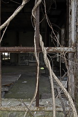 The Latest Use (95wombat) Tags: newyork abandoned broken nature vines factory beacon reclamation corroded