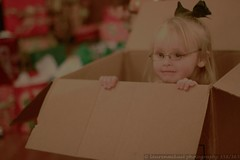 Doodlebug In a Box (Lauren Mikael Photography) Tags: christmas canon rebel 50mm toddler box gifts cardboard presents 365 cardboardbox t1i laurenmikael