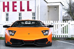 Hell Yeah. (Alex Penfold) Tags: auto camera orange cars alex sports car sport mobile canon photography eos photo cool flickr image awesome flash picture super f1 spot exotic photograph spotted hyper lamborghini supercar dsl goodwood sv spotting exotica sportscar 2012 sportscars supercars trax murcielago lambo penfold veloce spotter murci hypercar 60d hypercars superveloce lp670 alexpenfold f1dsl