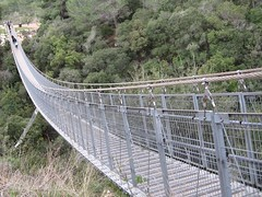 Suspension bridge, Nesher Park, Israel -   ,   (yoel_tw) Tags: bridge israel footbridge bridges suspensionbridge constructions nesher suspendedbridge  pedestrialbridge