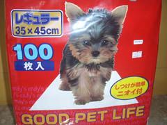 life dog pet good toilet