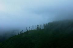 "_DSC0056 ""small steps between night and day"" (ChanHawkins) Tags: mist misty fog clouds queencharlottes haidagwaii kindakun smallstepsbetweennightday"