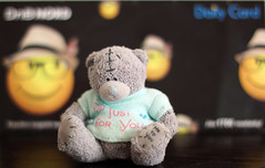 Funny faces (KaterRina) Tags: bear smile toy background smiles 50mm14 dailycard oneobject365daysproject pukatukas