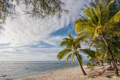 PGH1-P1040201-P2R Panasonic GH1 Rarotonga The Cook Islands (Nic (Luckypenguin)) Tags: world travel vacation holiday tourism beach cookislands rarotonga pacificislands uwa travelphotography sampleimages travelphotos ultrawideangle panasoniccamera samplephotos samplepics panasonicdigitalcamera thecookislands luckypenguin micro43 microfourthirds panasonicgh1 panasoniclumixgh1 olympusmzuiko918mmf456 cookislandshoneymoon