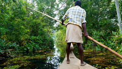 Shades of Green (Kerala, India 2011) (slawekkozdras) Tags: travel india man green nature water person boat canal back kerala lush boatman backwater