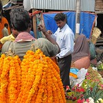 "Man Carrying Flowers at Howrah Flower Market <a style=""margin-left:10px; font-size:0.8em;"" href=""http://www.flickr.com/photos/14315427@N00/6829201023/"" target=""_blank"">@flickr</a>"