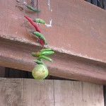 "Lime and Chillies Above Doorway <a style=""margin-left:10px; font-size:0.8em;"" href=""http://www.flickr.com/photos/14315427@N00/6829283847/"" target=""_blank"">@flickr</a>"