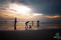 Sunset at Kuta (Adam Lai) Tags: sunset bali beach kids indonesia gold kuta silhuette sunsky