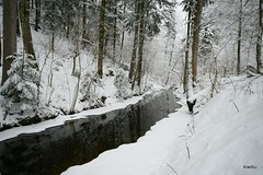 IMG_0809 (Kiwibu) Tags: schnee winter spiegel fluss eis wald hackensee earthnaturelife