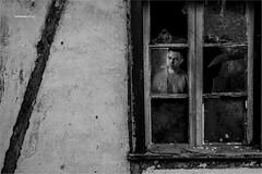 Through the window (Henrique_Gomes) Tags: light blackandwhite bw white house man black abandoned luz broken window glass vidro branco rustico photography 50mm photo casa blackwhite pessoa nikon interior rustic young monochromatic pb preto janela through homem pretoebranco jovem pretobranco abandonada quebrado enxaimel nikon50mm photodocumentary fotodocumentario nikond610