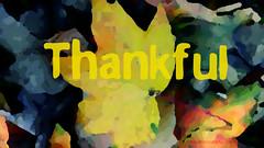 Thankful by Nakeva