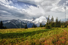 Sunrise side of Mt. Rainier (Deby Dixon) Tags: morning travel panorama mountain fall tourism nature clouds sunrise photography washington nationalpark nikon hiking exploring glacier wildflowers mtrainier volcanic deby allrightsreserved mtrainiernationalpark 2011 debydixon debydixonphotography