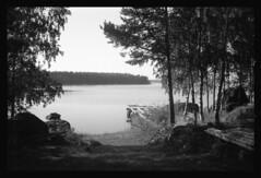 Path to the Beach (sstorholm) Tags: hc110 rangefinder tmax400 asa400 kodaktmax kodakhc110 konicac35ef film:iso=400 film:brand=kodak kodak4002tmy developer:brand=kodak developer:name=kodakhc110 film:name=kodaktmax400 filmdev:recipe=6351