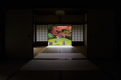 uncompromising beauty (k n u l p) Tags: autumn red green fall garden maple kyoto room olympus tofukuji zen tatami 京都 ep1 shigemori zd 東福寺 1122mm mirei 重森三玲 komyoin 光明院 額縁庭園 そうだ京都行こう ナイスな朝8時開門