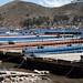 Serie di piattaforme ormeggiate nello stretto di Tiquina