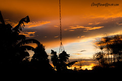 Dibujos en el cielo (AniSuperNova83) Tags: sunset house atardecer casa bonito padres naranja magico pereira supernova83 anisupernova