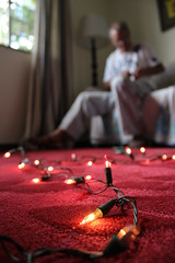 Working on the lights (Tio_XLVIII) Tags: christmas family home natal canon carpet 50mm lights 600d