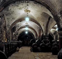 The Spirit of Wine (SpitMcGee) Tags: hessen spirit vault geist klostereberbach winecellar weinkeller gewölbe weinfässer storingwine