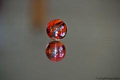 Marble (xstc) Tags: nikon marble d3100 pfbmag nikonafsdx85mmf35gedvrmicro