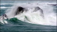 Le Yurc'h. (glemoigne) Tags: port brittany bretagne gale breizh brest 29 bzh finistère iroise portsall penarbed landunvez tremazan trémazan glemoigne gilbertlemoigne