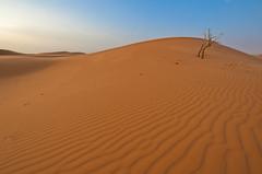 Sand dunes   (Najim J. Almisbah) Tags: nikon sigma kuwait 35 1020  jassim  najim     d300s  almisbah