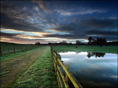 Old England Woods (angus clyne) Tags: road camera morning sky cloud lake reflection water field grass forest photoshop sunrise fence landscape dawn scotland cow pond frost track photographer