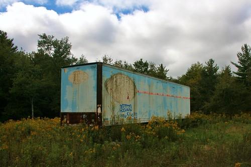Spraypainted storage trailer in the flowers