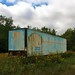 Spraypainted storage trailer in the flowers