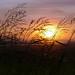 南寮日落, Sunset