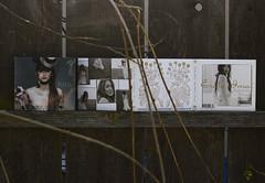 """島袋 寛子 - """"寛 スペシャル・ボックス"""" と 今井 絵理子 -  """"Single Collection 〜Stairway〜"""" (J-POP 365 - 12.27.2011 - DAY 98)"""
