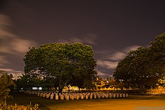 DSC_0374 (pradyisgreat) Tags: lighting camera light india tree cemetery grave night clouds speed wonderful photography photo amazing nikon focus long exposure photographer vibrant sigma best photograph shutter mm pradeep 70300 sekar prady d3100 pradeepsekarphotography