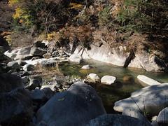 PB243744 (karst) Tags: autumn japan walk autumncolors e30 yamanashi 2011 shosenkyo autumnwalk 1122mmf2835