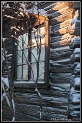 Window (mmoborg) Tags: winter snow cold kyla vinter snö 2012 mmoborg mariamoborg