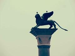 IL LEON DI SAN MARCO (Olarm) Tags: italia sanmarcos fotografia venecia leonalado