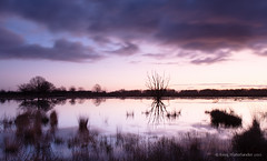 Sunrise Bargerveen (Kees Waterlander) Tags: nederland peat veen moor bog drenthe moorland bargerveen theneterlands hoogveen leehardneutraldensitygrad06nd