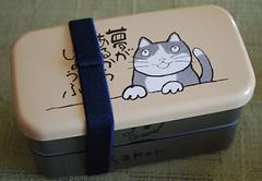 Sakon reminds me of Clancey (Judy's Notebook) Tags: cute bento hajime sakon