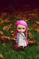 (poordittums) Tags: doll blythe custom posie ebl petitewanderling alpacascalp