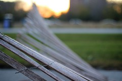 Fallen (Philocycler) Tags: sunset chicago grass fence bokeh fallen chicagoist lakefrontpathchicago