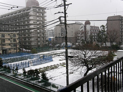 #1815 first snow: view from kitchen door (Nemo's great uncle) Tags: snow geotagged tokyo newhome   chitosedai  setagayaku   geo:lat=35657599601542984 geo:lon=1396150656240967