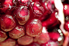 Pomegranate ||  (    , ) Tags: red macro pomegranate qatar qtr    ameera    amoora