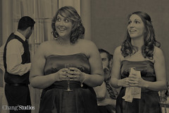 Chang2 Studios-016.jpg (leeann3984) Tags: wedding usa illinois 2011 bubis