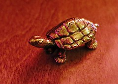 Turtles Help You