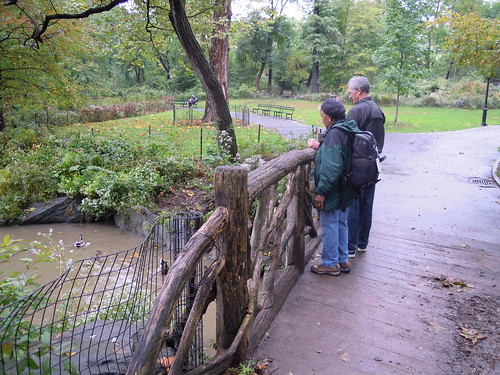 NYC Central Park - Dots and fellow birder