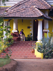 Arco Iris Homestay, Curtorim, Goa 29.jpg (Stephanie Booth) Tags: dog india arcoiris goa curtorim india20112012