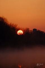 dans ma tour d'ivoire (alain.beauvois62) Tags: lac brume matin armagnac gers