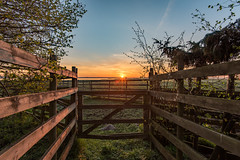 At the gate (jarnasen) Tags: morning sky copyright sun nature field grass sunrise fence landscape dawn early wooden nikon gate sweden outdoor tripod explore sverige nikkor plank hdr sunstar stergtland explored d810 nybro nordiclandscape 1635mmf4 jarnasen