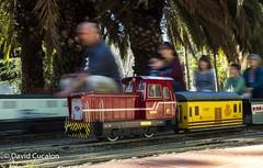 Movement (David Cucaln) Tags: longexposure david train fun tren movement movimiento diversion largaexposicin cucalon